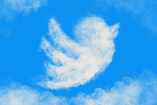 Twitter shares rise on first quarterly Net Profit