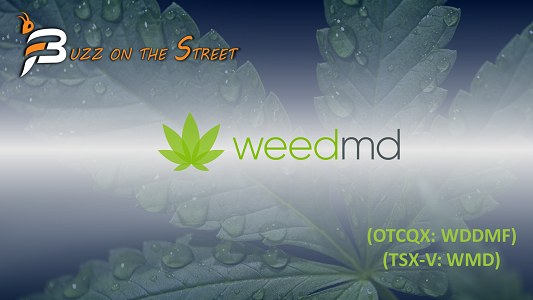 """The Latest """"Buzz on the Street"""" Show: Featuring WeedMD (TSX-V: WMD) (OTCQX: WDDMF) News Recap"""