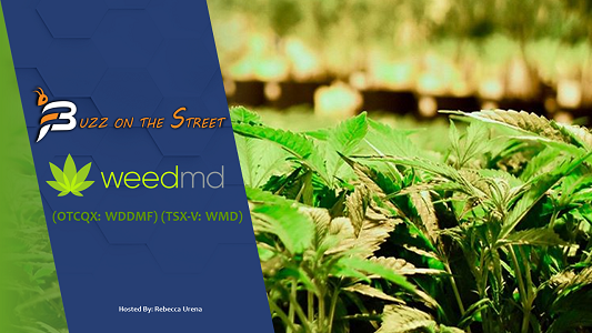 "The Latest ""Buzz on the Street"" Show: Featuring WeedMD (TSX-V: WMD) (OTCQX: WDDMF) Cannabis Cultivation News"